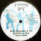 AFRIKA BAMBAATAA  & JAMES BROWN : UNITY