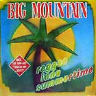 BIG MOUNTAIN : REGGAE INNA SUMMERTIME