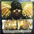 BIG PUNISHER : ENDANGERED SPECIES