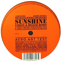 ALISON DAVID & THE BLACK SCIENCE ORCHESTRA : SUNSHINE  (FARLEY & HELLER REMIX)