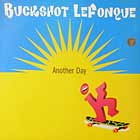 BUCKSHOT LEFONQUE : ANOTHER DAY  / MUSIC EVOLUTION (DJ PREMIER REMIX)