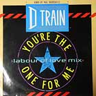 D TRAIN : YOU'RE THE ONE FOR ME  (LABOUR OF LOV...