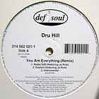 DRU HILL : YOU ARE EVERYTHING  (REMIX)