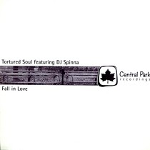 TORTURED SOUL  ft. DJ SPINNA : FALL IN LOVE
