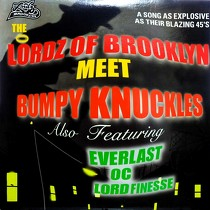 LORDZ OF BROOKLYN : THE LORDZ OF BROOKLYN MEET BUMPY KNUC...