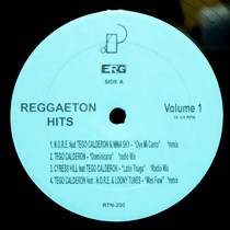 V.A. : REGGAETON HITS  VOL.1