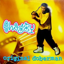SHAGGY : ORIGINAL DOBERMAN