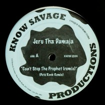 JERU THE DAMAJA : CAN'T STOP THE PROPHET
