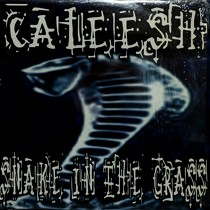 CALEESH : SNAKE IN THE GRASS