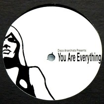 DISCO ANARCHISTS : YOU ARE EVERYTHING