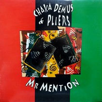 CHAKA DEMUS  & PLIERS : MR MENTION