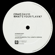 CRAIG DAVID : WHAT'S YOUR FLAVA?