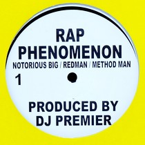 NOTORIOUS B.I.G.  , REDMAN & METHOD MAN : RAP PHENOMENON