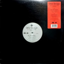SISTER SLEDGE : WE ARE FAMILY  (93 REMIXES)