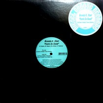 BRENDA K. STARR : FEELS SO GOOD  (SAL DANO & ROBBIE TRONCO REMIXES)