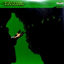 VIKTOR VAUGHN  / MF DOOM : RAE DAWN  / CHANGE THE BEAT