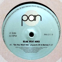 BLAK BEAT NIKS : DO YOU WANT ME  (THE REMIXES)