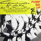 GRANDMASTER MELLE MEL  & THE FURIOUS FIVE : PUMP ME UP  / THE MEGAMELLE MIX