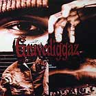 GRAVEDIGGAZ : DIARY OF A MADMAN  / CONSTANT ELEVATION