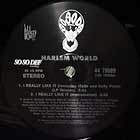 HARLEM WORLD  ft. MASE & KELLY PRICE : I REALLY LIKE IT