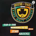 HOUSE OF PAIN : TOP O' THE MORNING TO YA (REMIX)  / JUMP AROUND (PETE ROCK REMIX)