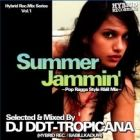 DJ DDT-TROPICANA : SUMMER JAMMIN'  pop ragga style R&B mix