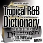 DJ DDT-TROPICANA : Tropical R&B Dictionary -WHITE EDITION-  New Jack Swing Flavor R&B Best! Part.2