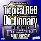 DJ DDT-TROPICANA : Tropical R&B Dictionary -BLUE EDITION-  90's US R&B Classics & Rare Tracks Mix Vol.2
