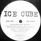 ICE CUBE : ENDANGERED SPECIES  (REMIX)