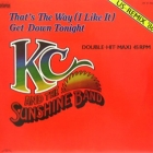 K.C. AND THE SUNSHINE BAND : THAT'S THE WAY (I LIKE IT)  (NEW VERSION)