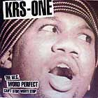 KRS ONE : CAN'T STOP,WON'T STOP