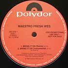MAESTRO FRESH-WES : BRING IT ON  / ON THE JAZZ TIP