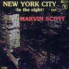 MARVIN SCOTT : NEW YORK CITY (IN THE NIGHT)