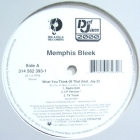 MEMPHIS BLEEK  ft. JAY-Z : WHAT YOU THINK OF THAT