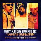 NELLY/P. DIDDY/MURPHY LEE : SHAKE YA TAILFEATHER