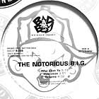 NOTORIOUS B.I.G. : WHO SHOT YA  / HYPNOTIZE