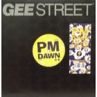P.M. DAWN : A WHATCHERS POINT OF VIEW (DON'T CHA THINK)  / ODE TO A FORGETFUL MIND