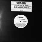 SHAGGY : WHY YOU TREAT ME SO BAD  (THE SALAAM MIXES)