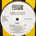 STEELY & CLEVIE : WHY