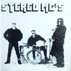 STEREO MC'S : LOST IN MUSIC