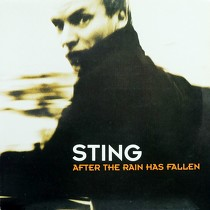 STING : AFTER THE RAIN HAS FALLEN  / SHAPE OF MY HEARTH