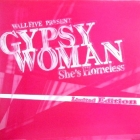 WALL FIVE  PRESENT : GYPSY WOMAN (SHE'S HOMELESS)