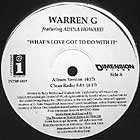 WARREN G  ft. ADINA HOWARD : WHAT'S LOVE GOT TO DO WITH IT