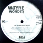 WAYNE WONDER : GONNA LOVE YOU