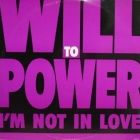 WILL TO POWER : I'M NOT IN LOVE