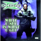 XZIBIT : WHAT U SEE IS WHAT U GET